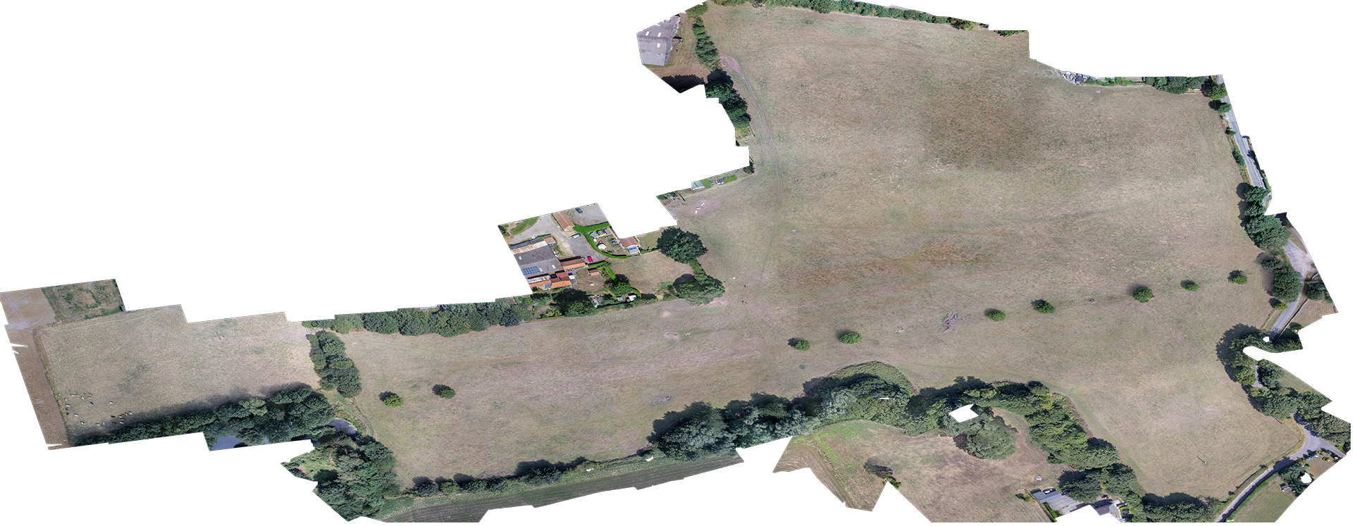 Orthomosaic image of Harpswell archaeology site